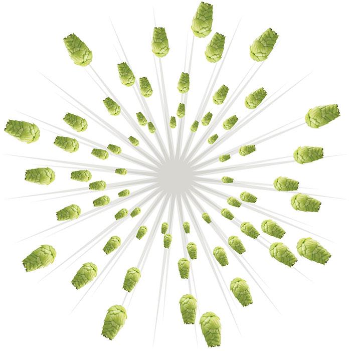 hops-bursting-o